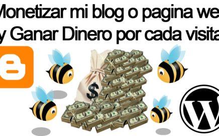 Como Monetizar mi blog o pagina web y Ganar Dinero por cada visita GRATIS