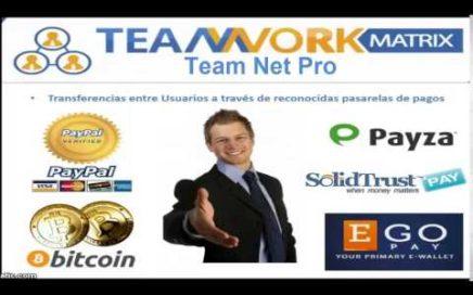 TEAM WORK MATRIX (negocio online para ganar dinero en dólares desde casa)