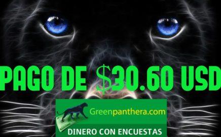 GreenPanthera | ¡Pago De $30.60 Dolares! | Gana Dinero Con Encuestas Por Internet Para Paypal