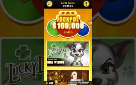Cómo ganar dinero con Lucky Day