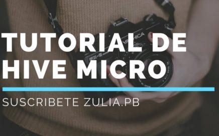 HIVE MICRO COMO FUNCIONA MUESTRAS DE PAGO 20 DOLARES SEMANALES HIVE WORK