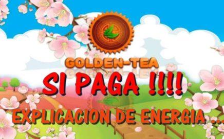 $$55 DOLARES!!$$ $GANA DINERO POR INTERNET !! GOLDEN TEA ENERGÍA EXPLICACIÓN