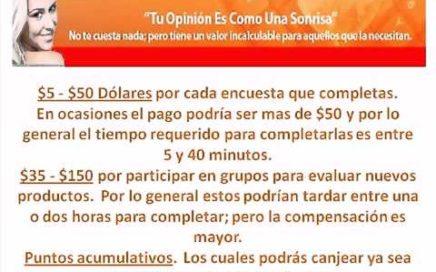 Encuestas Remuneradas _ Ganar Dinero Extra Rellenando Encuestas _ Trabajar Desde Casa
