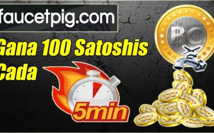 Faucetpig Explicación Completa | Gana 100 Satoshis cada 5 Minutos | Gokustian