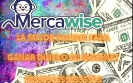 LA MEJOR PAGINA PARA GANAR DINERO POR INTERNET   Mercawise   $20 PESOS POR ENCUESTA   2017