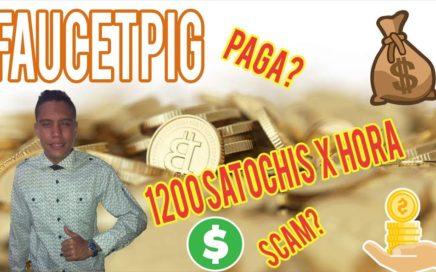 Faucetpig, Como Ganar 1200 Satochis Cada Hora. Explicación Completa | YA NO PAGA SCAM