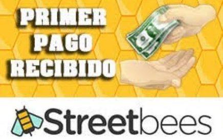 Como Ganar Dinero en Paypal con Streetbees de forma Fácil y rápido 2018