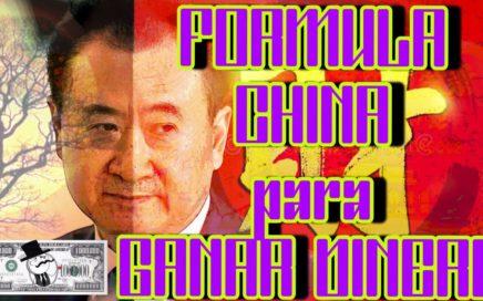 Como Ser Rico o Como Ganar Dinero  Formula CHINA by Wang Jianlin