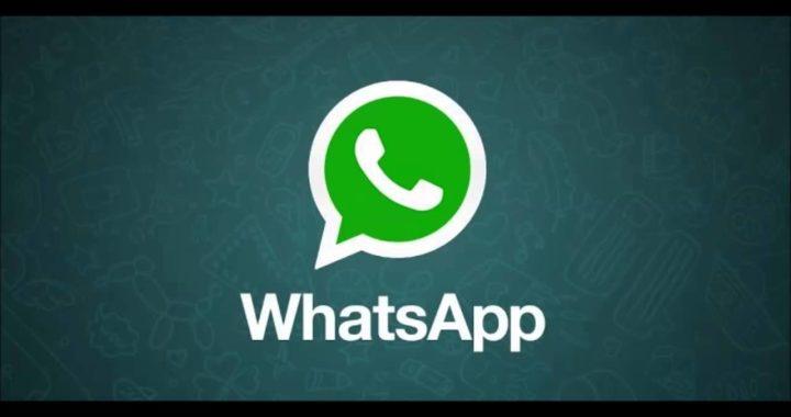 gana dinero con whatsapp