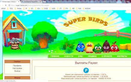 Dinero online, Prueba de Pago SUPER-BIRD, pagando 100% a PAYEER
