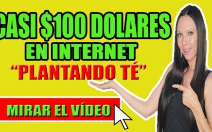 Casi 100 Dolares En Internet Plantando Té | Ganar Dinero Por Internet 2018