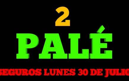2 PALE 3 NÚMEROS PALE SEGURO PARA HOY LUNES 30/07/2018