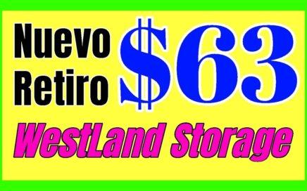 $63 DOLARES Con WESTLAND STORAGE Mineria De CRIPTOMONEDAS Pagina Para Ganar Dinero Online